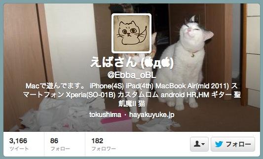 Twitter prof 20130607
